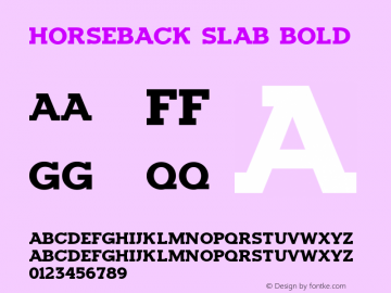 Horseback Slab Bold Version 1.00 2016图片样张