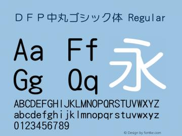 DFP中丸ゴシック体 Regular Version 2.20图片样张