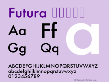 Futura Font,Futura Condensed Medium Font,Futura-CondensedMedium Font