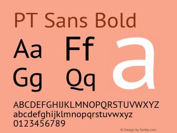 PT Sans Bold 9.0d1e1 Font Sample