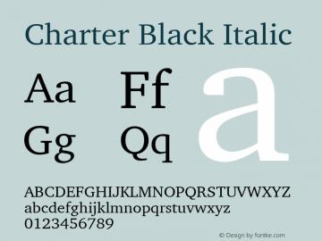 Charter Black Italic 9.0d2e1图片样张