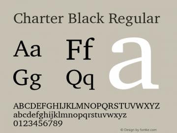Charter Black Regular 9.0d2e1图片样张