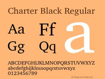 Charter Black Regular 10.01e1图片样张