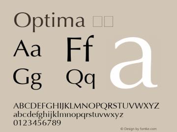 Optima 粗体 6.1d4e2 Font Sample