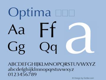 Optima 特黑体 6.1d4e2 Font Sample