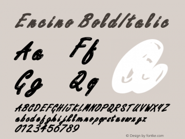 Encino BoldItalic Altsys Fontographer 4.1 12/29/94 Font Sample