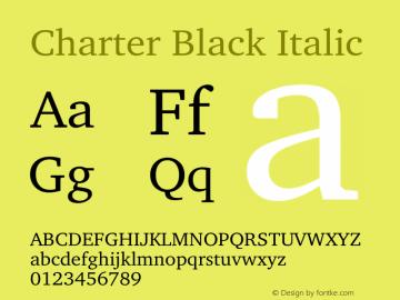Charter Black Italic 10.01e1图片样张