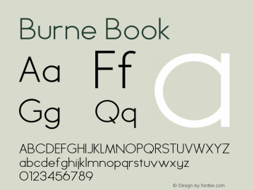 Burne Book Version 1.00 2013图片样张