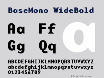 BaseMono WideBold Version 001.000 Font Sample
