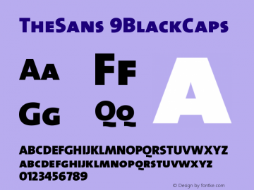 TheSans 9BlackCaps Version 1.0 Font Sample
