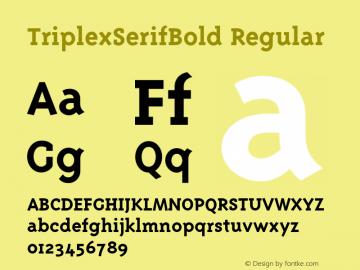 TriplexSerifBold Regular 001.000图片样张
