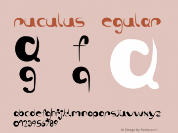 ruculus Regular Version 1.1 Font Sample