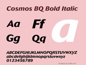 Cosmos BQ Bold Italic Version 001.000;Core 1.0.01;otf.5.02.2298;18.07W Font Sample