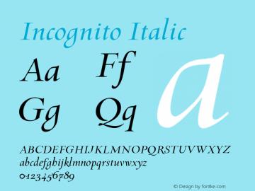 Incognito Italic 001.000 Font Sample