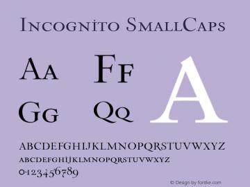 Incognito SmallCaps 001.000 Font Sample