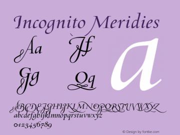 Incognito Meridies 001.000 Font Sample