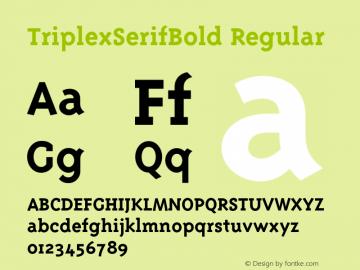 TriplexSerifBold Regular 001.001图片样张