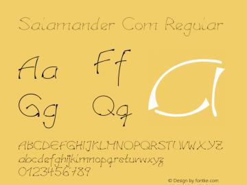 Salamander Com Regular Version 1.30 Font Sample