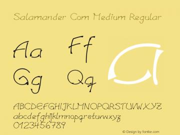 Salamander Com Medium Regular Version 1.30 Font Sample