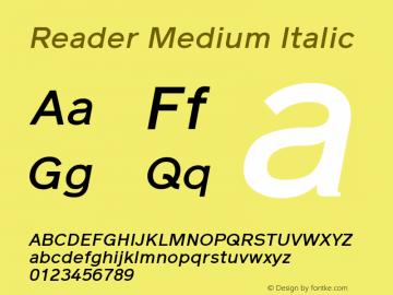 Reader Medium Italic Version 1.000图片样张