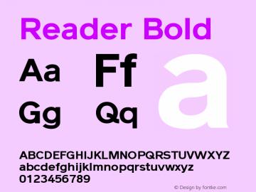 Reader Bold Version 1.000图片样张
