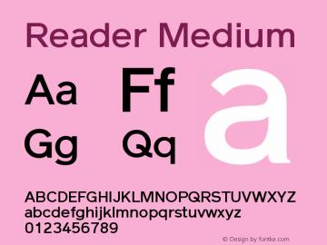 Reader Medium Version 1.000图片样张