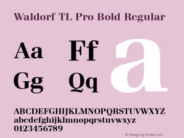 Waldorf TL Pro Bold Regular Version 1.00; 2009图片样张