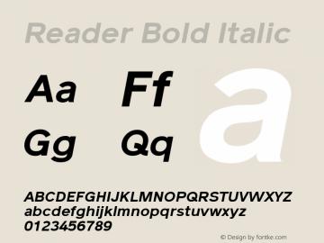 Reader Bold Italic Version 1.002图片样张