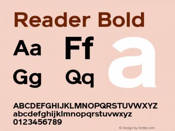 Reader Bold Version 1.002图片样张