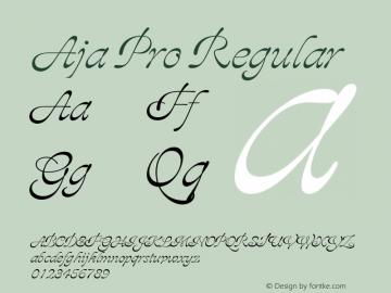 Aja Pro Regular Version 001.001;Core 1.0.01;otf.5.04.2741;08.08W图片样张