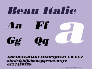 Beau Italic Altsys Fontographer 4.1 10/31/95 Font Sample
