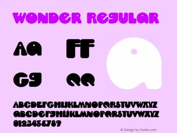 Wonder Regular Version 1.000图片样张