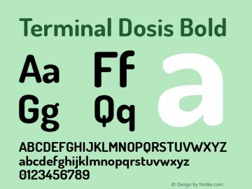 Terminal Dosis Bold Version 1.006 Font Sample