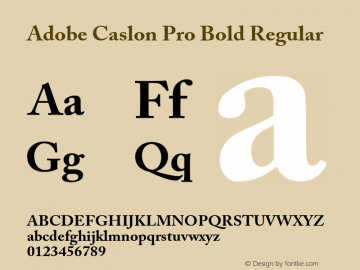 Adobe Caslon Pro Bold Regular Version 2.096;PS 2.000;hotconv 1.0.70;makeotf.lib2.5.58329 Font Sample