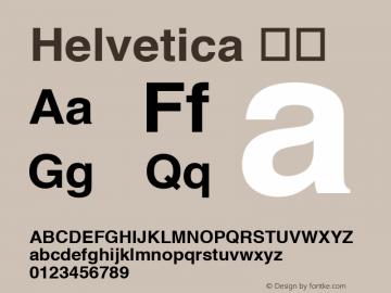 Helvetica 粗体 6.0d7e1 Font Sample