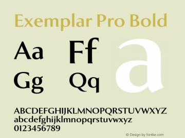 Exemplar Pro Bold Version 2.300图片样张