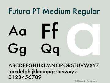 Futura PT Medium Font,Futura PT Font,FuturaPT-Medium Font