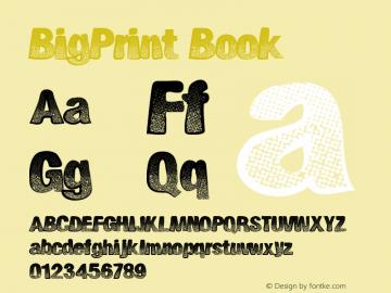 BigPrint Book Version 1.00 September 11, 2 Font Sample