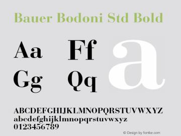 Bauer Bodoni Std Bold Version 2.030;PS 002.000;hotconv 1.0.51;makeotf.lib2.0.18671图片样张
