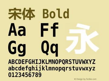 宋体 Bold Version 5.00 Font Sample