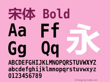 宋体 Bold Version 5.03 Font Sample