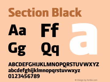 Section Black 2.000图片样张
