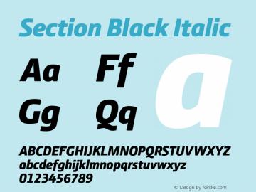 Section Black Italic 2.000图片样张