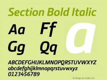 Section Bold Italic 2.000图片样张
