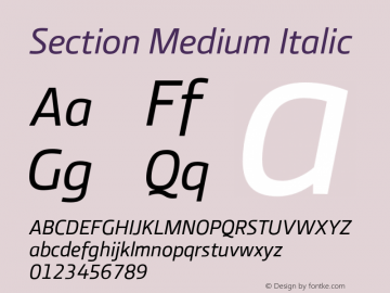 Section Medium Italic 2.000图片样张