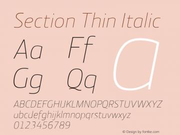 Section Thin Italic 2.000图片样张