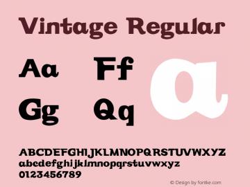 Vintage Regular Version 003.001图片样张