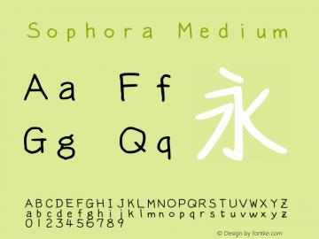 Sophora Medium Version 4.2.8图片样张