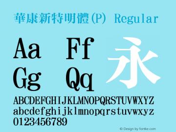 華康新特明體(P) Regular Version 2.200图片样张