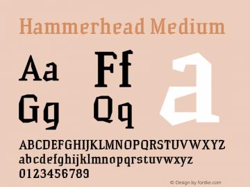 Hammerhead Medium Version 001.000 Font Sample